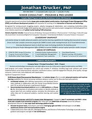 Program Manager - Senior Technology Cons