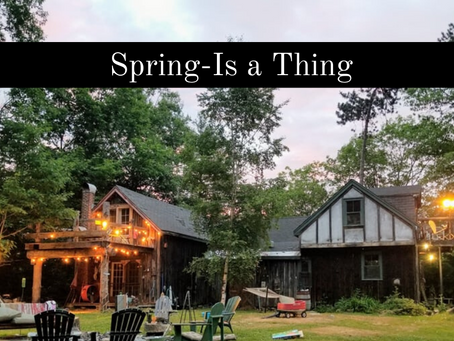 5 Design Elements To Try This Spring