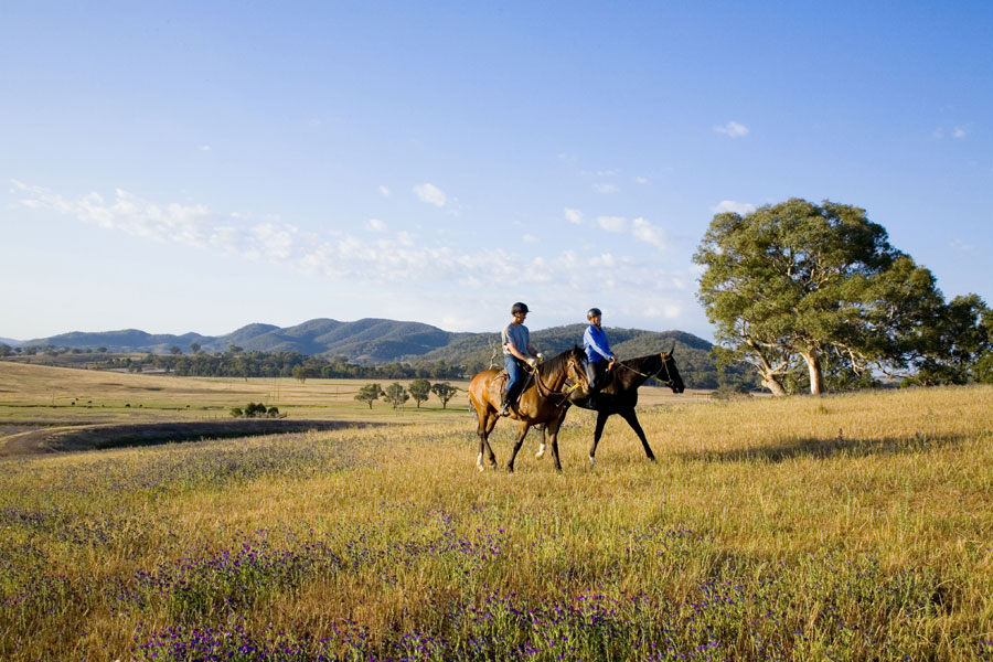 mudgee-horse-riding-900x600