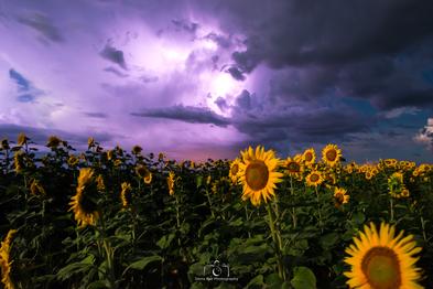 The Storm Rolls Through