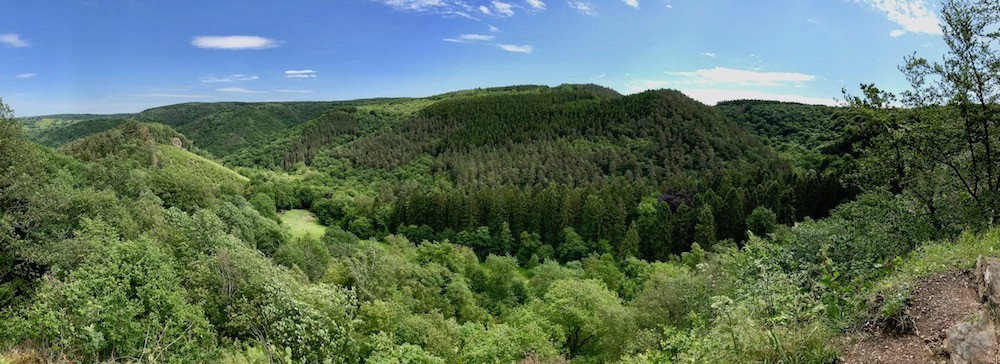 Panorama, au point de vue du Drouet, sur la vallée du Ninglinspo et le bois de la Picherotte, où feuillus et conifères s'étendent à perte de vue.