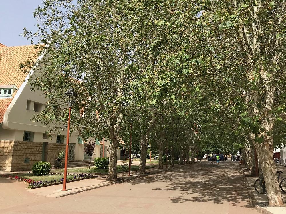 rue d'ifrane, Maroc