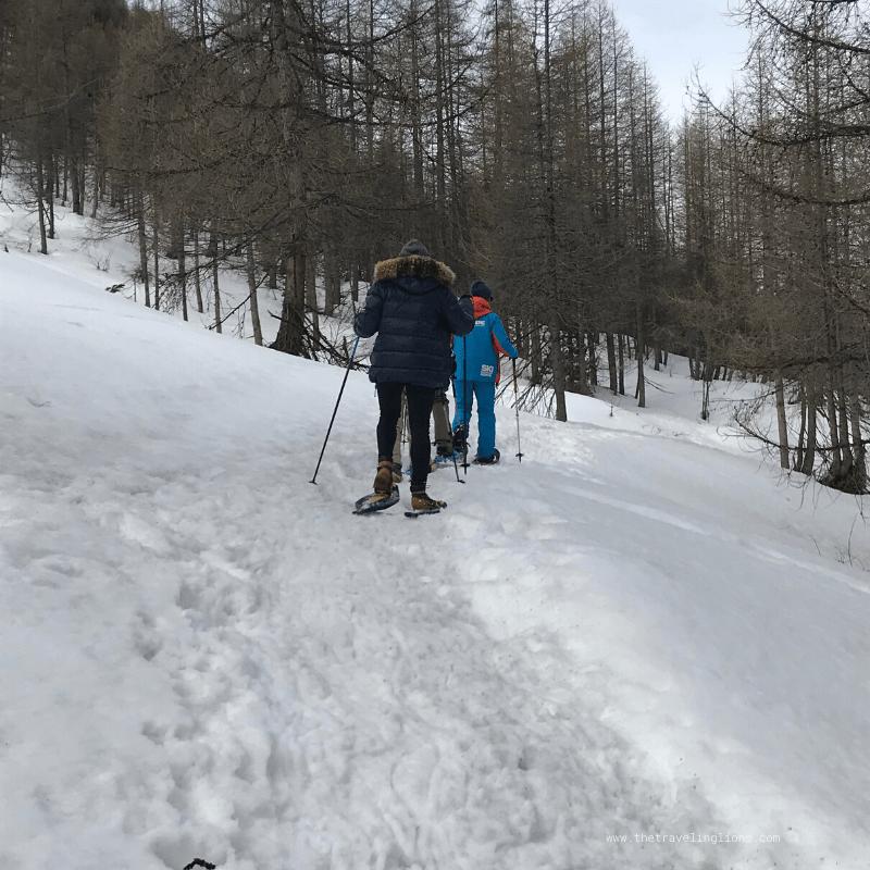 Expérience en raquettes, dans les bois enneigés de la station de ski de Val d'Isère, à hauteur du hameau du Fornet