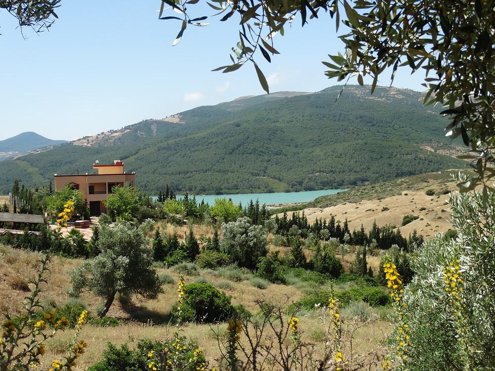 Lac et forêts, sur la route de Chefchaouen, image de notre road trip en famille au Maroc
