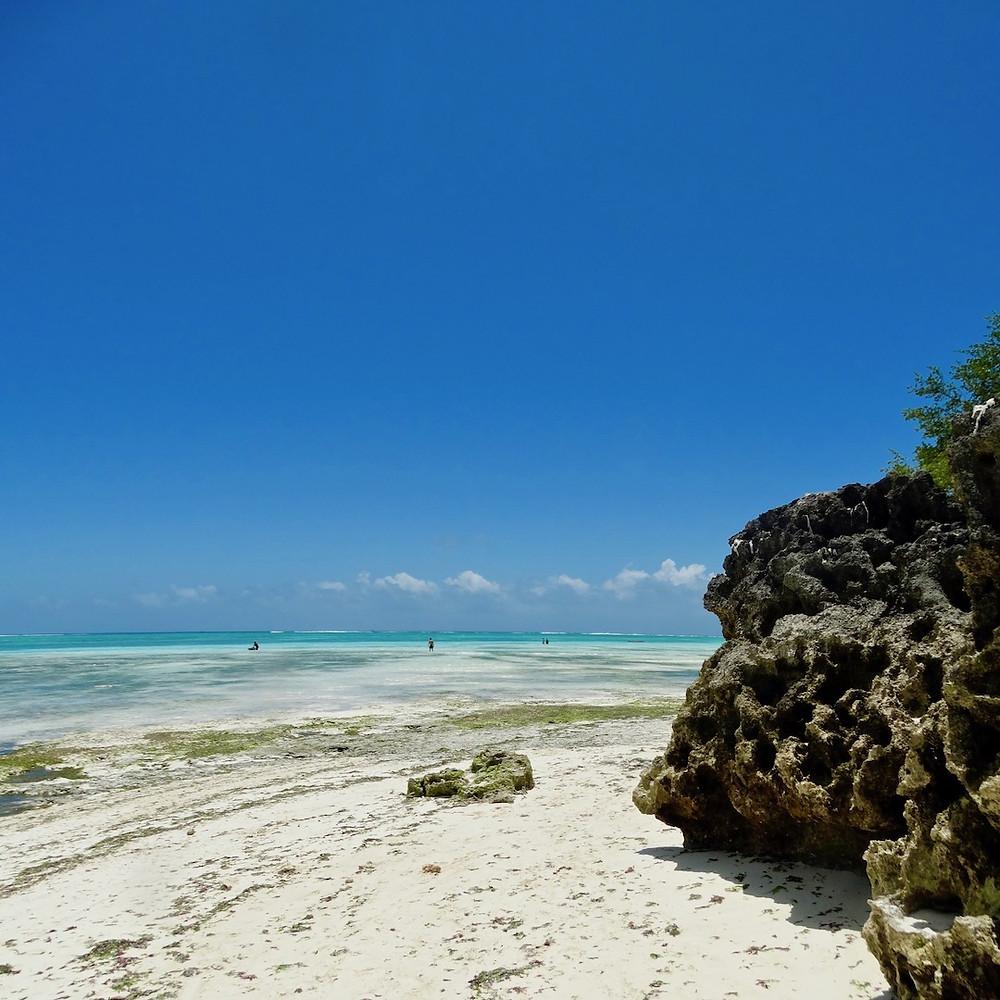 Plage Nungwi, à l'extrême nord de l'île d'Unguja. Les vagues à l'horizon, indiquent l'emplacement de la barrière de corail.