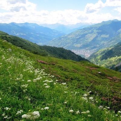 Séjours à la montagne