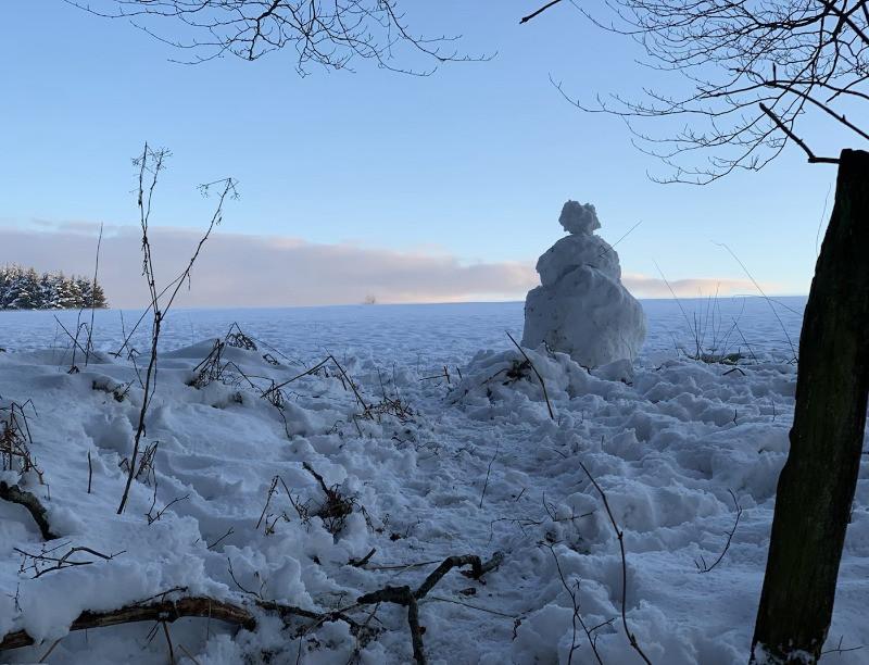 La Promenade des Bisons à Recogne (Bastogne), une promenade à faire en famille en hiver. La preuve avec ce bonhomme de neige à la sortie des bois