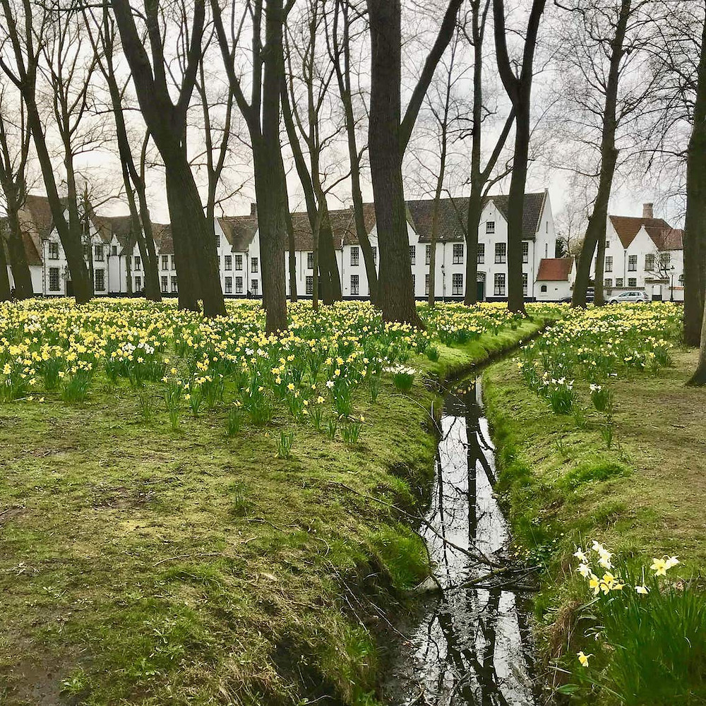 Béguinage de Bruges et son parc fleuri