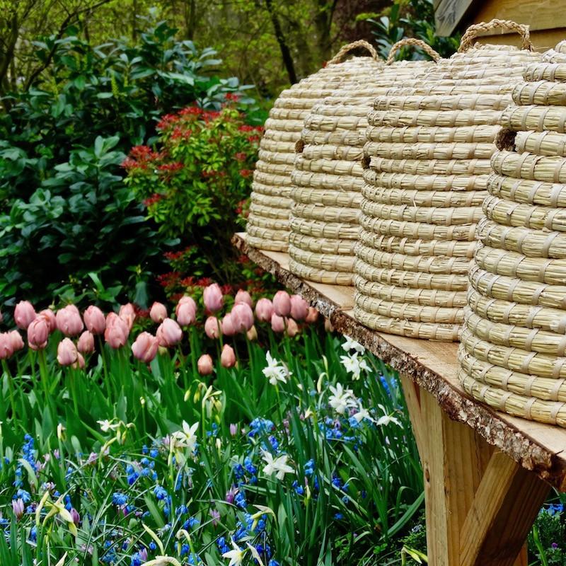 tulipes, muserais et narcisses dans un jardin du parc Keukenhof à Lisse, en Hollande, Pays-Bas