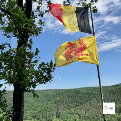 Dans la vallée du Ninglinspo, au point de vue du Drouet, accrochés à un mât de métal, le drapeau belge et le coq hardi claquent au vent, unis dans un même effort.