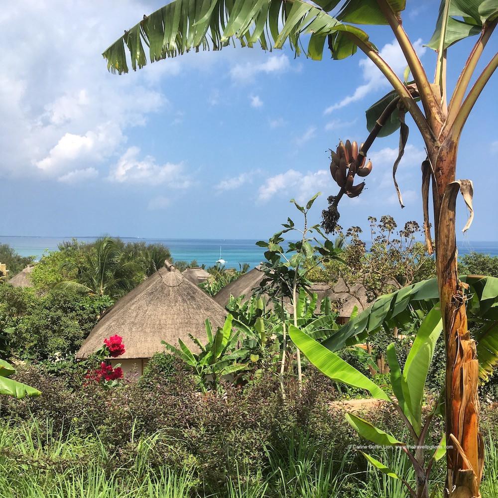 Cet hôtel design serait-il le meilleur de Zanzibar et un des plus beaux d'Afrique? Nous vous donnons notre avis authentique sur l'hôtel Zuri Zanzibar. C'est un  hôtel de luxe 5 étoiles sur la plage de Kendwa, au nord de l'île d'Unguja, à Zanzibar. Conçu comme un village, cet hôtel boutique est un paradis sur terre, pour des vacances de rêve en Tanzanie.