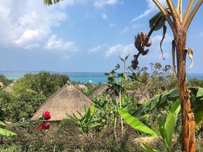 Zuri Zanzibar : l'équilibre ultime entre hôtel 5 étoiles et tourisme durable