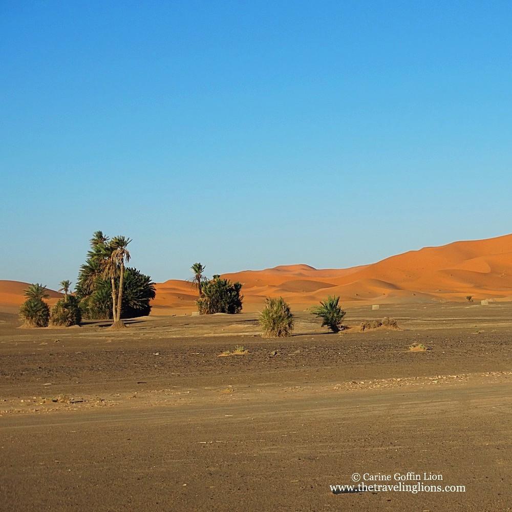 aux pieds des dunes de l'Erg Chebbi, Merzouga, Maroc