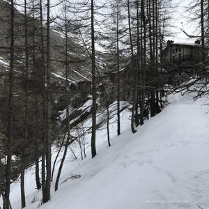 Dans les bois, derrière le hameau du Fornet