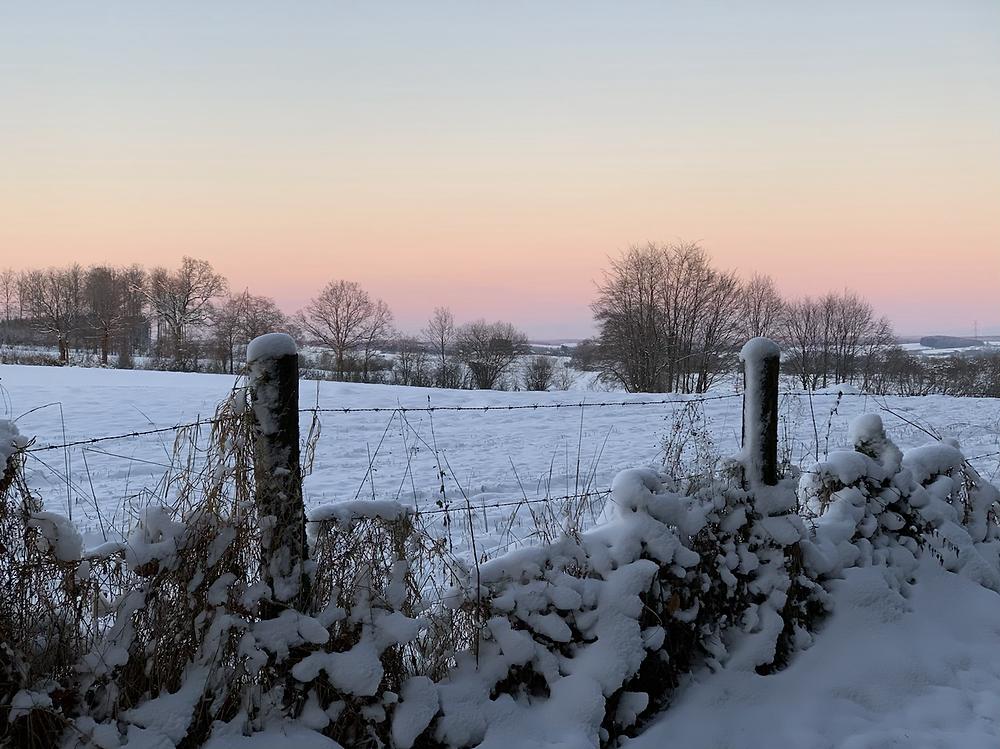 Prairies et campagnes de Bastogne enneigees au coucher du soleil.
