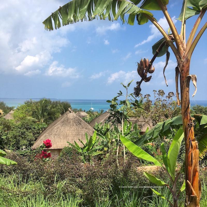 Les jardins tropicaux et bungalows de luxe du Zuri Zanzibar