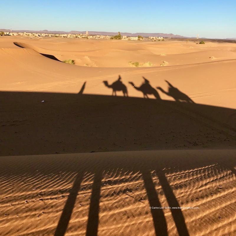 Ombres de dromadaires et de voyageurs en provenance de l'Erg Chebbi, au lever du soleil