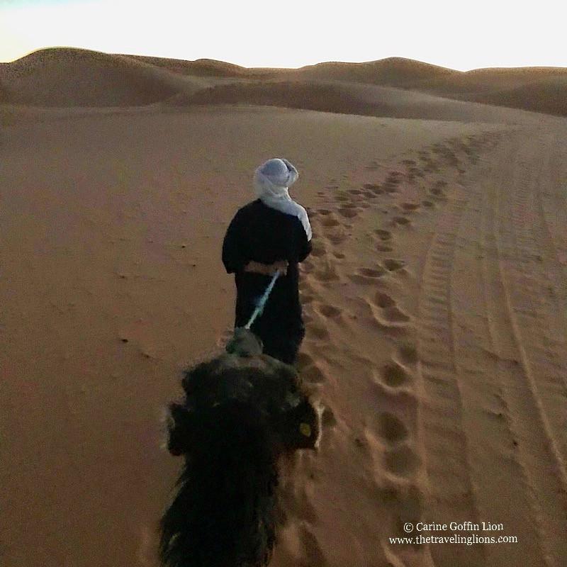 ascension de l'erg Chebbi - notre guide et le dromadaire