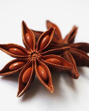 star-anise-1049585_1920.jpg