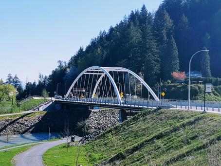 A bridge to recovery...
