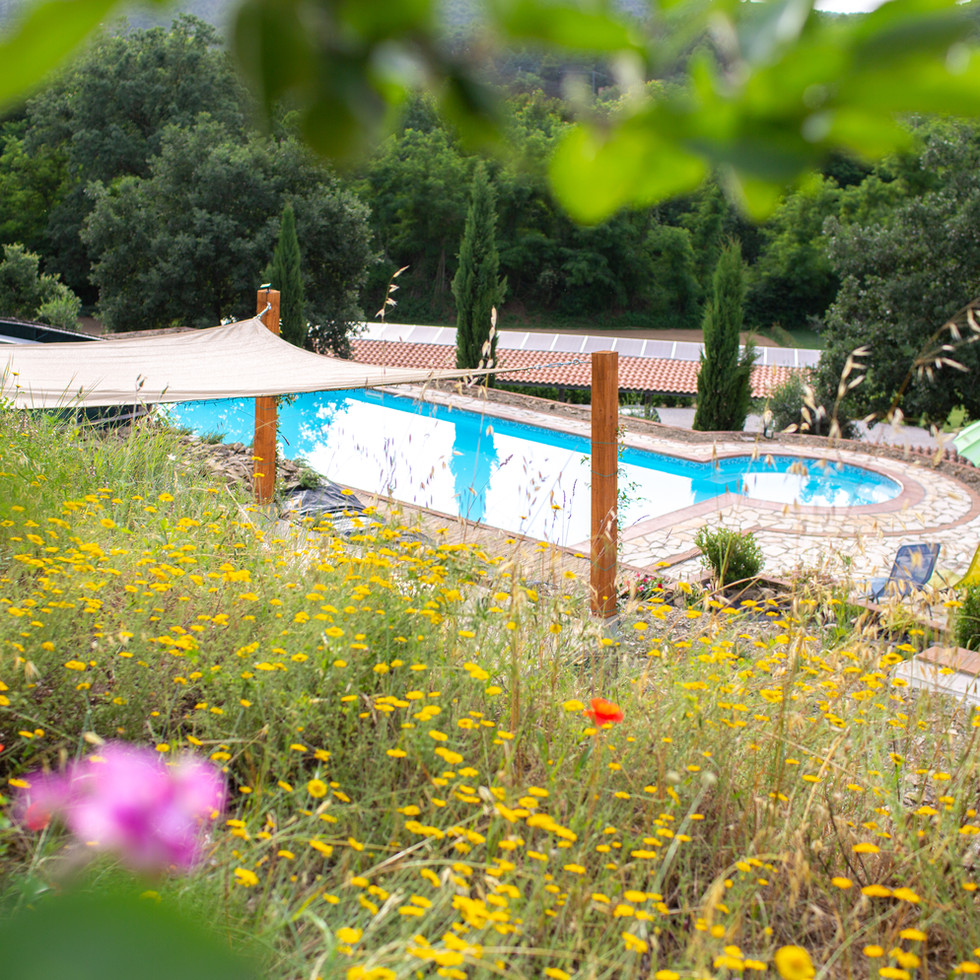 Casa Nestore Pool View