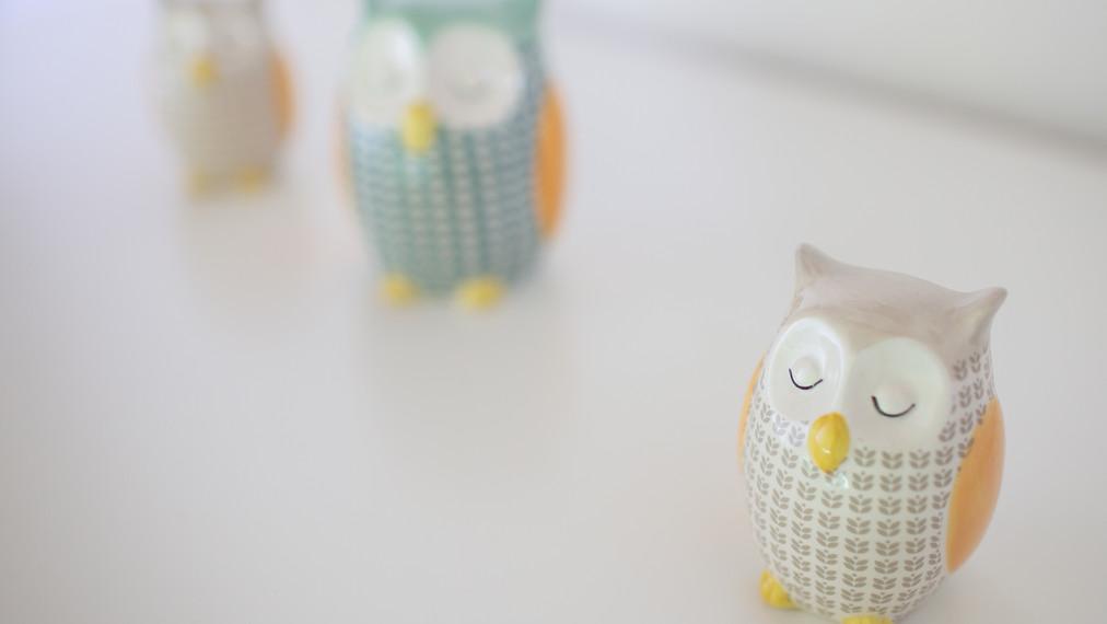 Owls Fico double bedroom