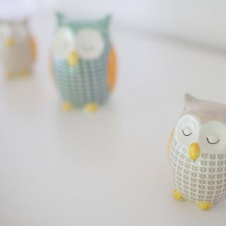 Owl Knick Knacks