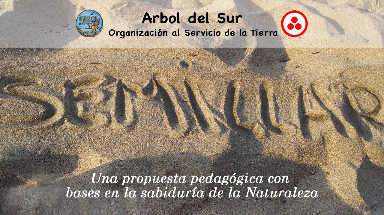 Semillar flyer Arbol del Sur.jpg