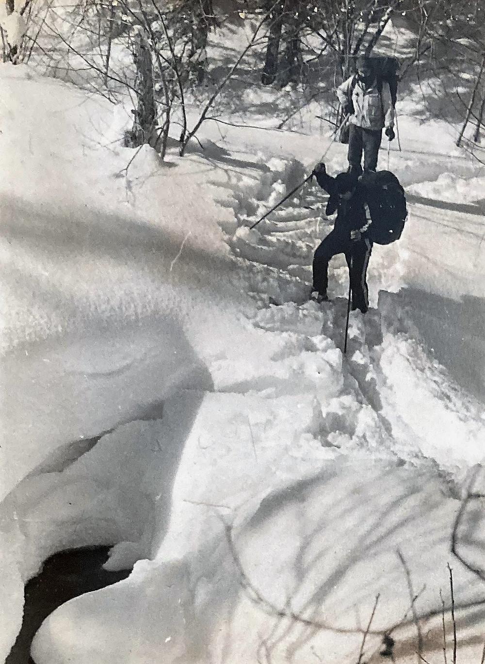 Река Лангари  skitour.club  Блог Сергея Чеботова