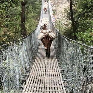 Подвесные мосты Непала