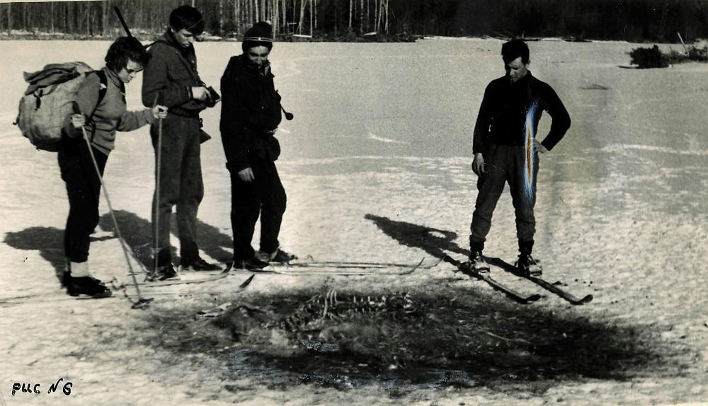 Останки изюбра| skitour.club| Блог Сергея Чеботова
