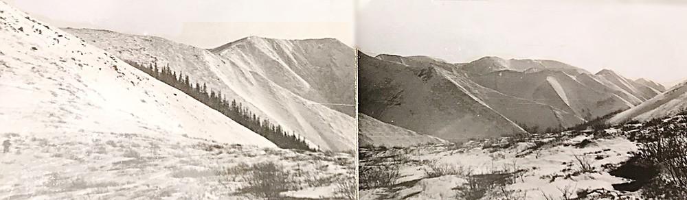 Долина реки Колбонью — Туристический поход в район хребта Дуссе-Алинь 1986 год — Блог Сергея Чеботова