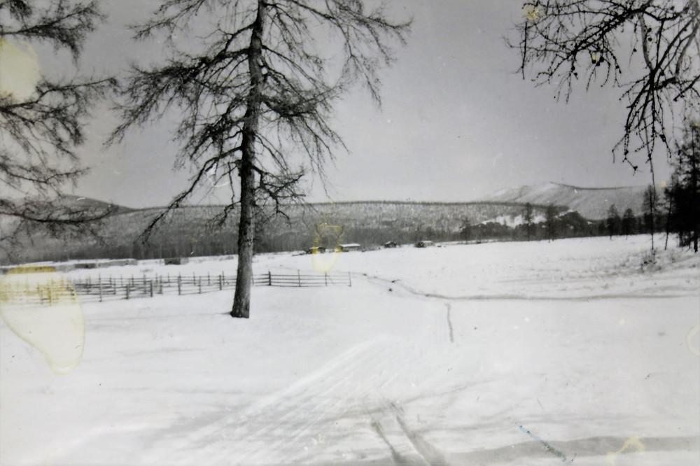Коневодческая ферма| skitour.club| Блог Сергея Чеботова
