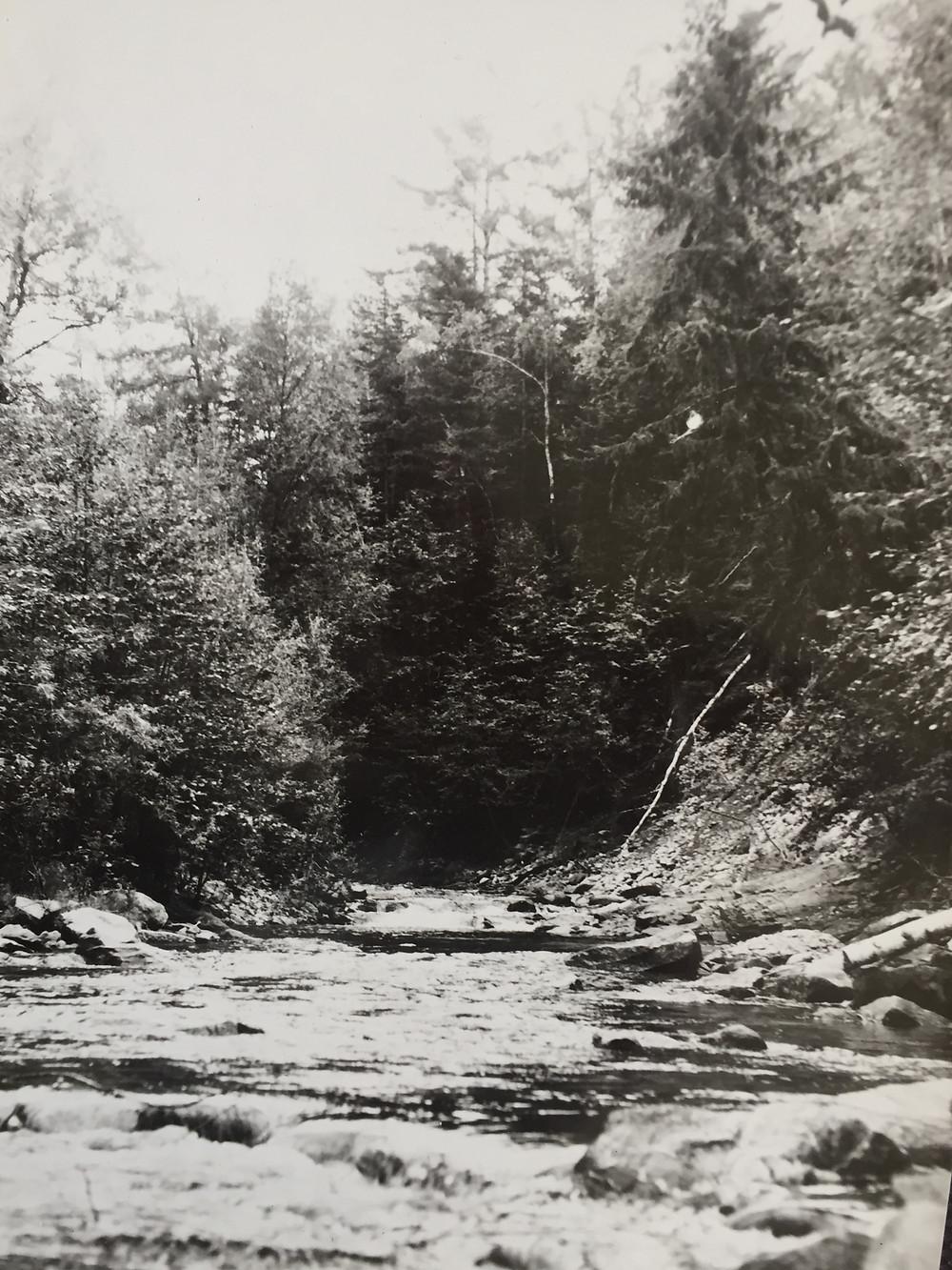 Река Бол. Беккельдиуль| skitour.club| Блог Сергея Чеботова