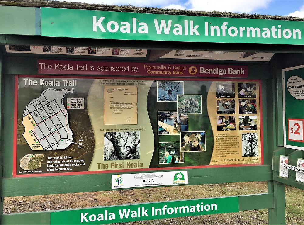 Koala Walk Information| skitour.club| Блог Сергея Чеботова