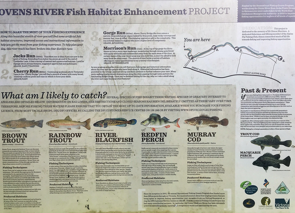 Рыбалка на реке Овенс| skitour.club| Блог Сергея Чеботова