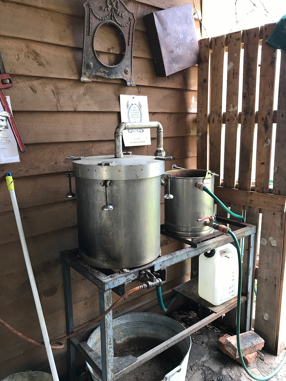 Lavender oil distillation apparatus.