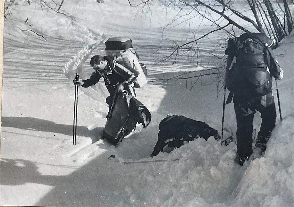 Река Ягодная  skitour.club  Блог Сергея Чеботова