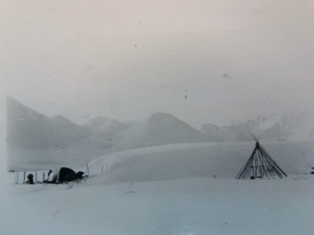Остовы чумов в устье Нижней Хороньжи| skitour.club| Блог Сергея Чеботова