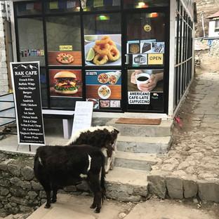 Яркие вывески и телята на улицах это Намче Базар.