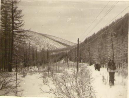 Лыжня идет вдоль телефонной линии — Туристический поход в район хребта Дуссе-Алинь 1986 год — Блог Сергея Чеботова