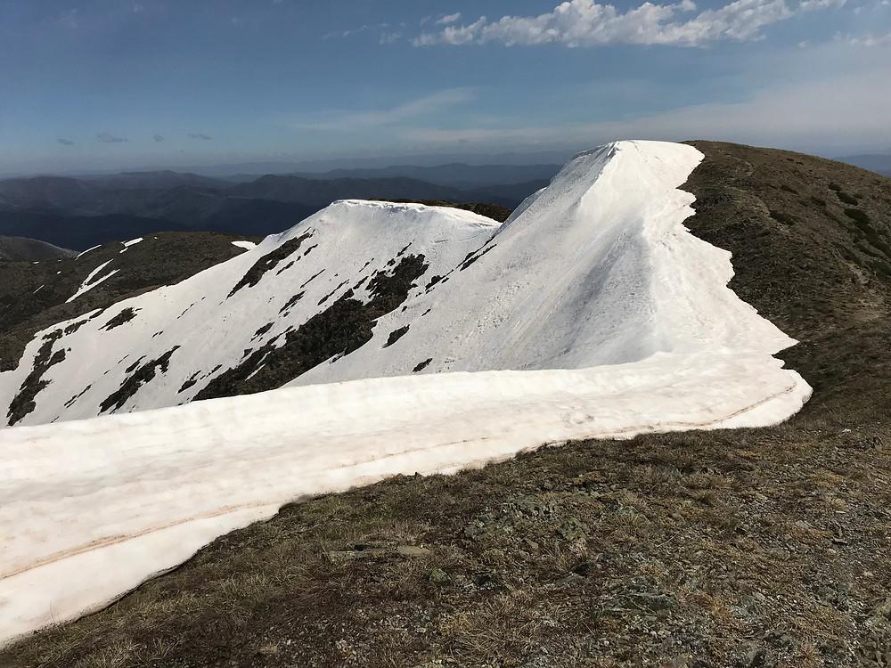 Гребень вершины Feathertop| skitour.club| Блог Сергея Чеботова