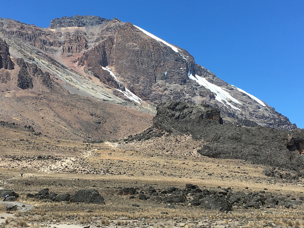 Западный склон Килиманджаро