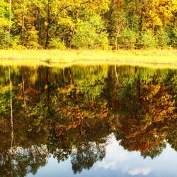 Lake in Atumn