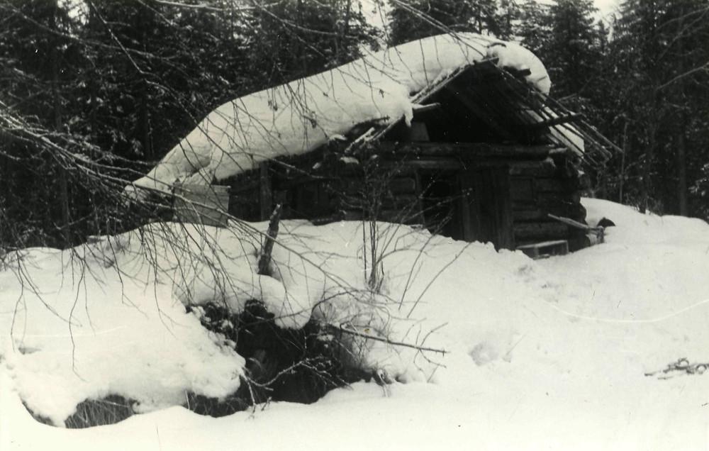 Охотничья избушка| skitour.club| Блог Сергея Чеботова