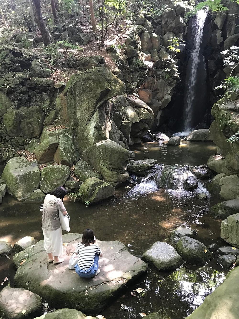 Водопад в парке.