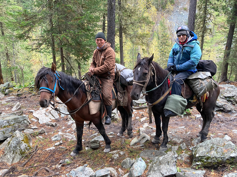 Алтайские лошадки| skitour.club| Блог Сергея Чеботова