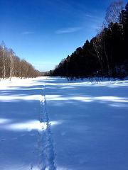 Winter, ski trck