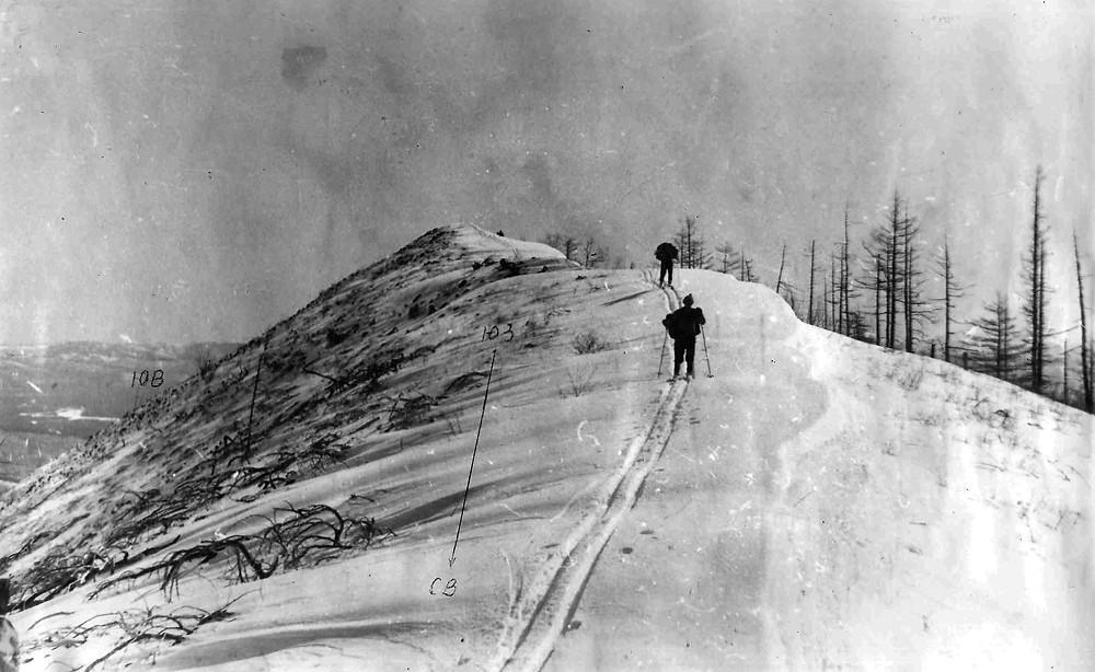 Долина реки Амгунь| skitour.club| Блог Сергея Чеботова