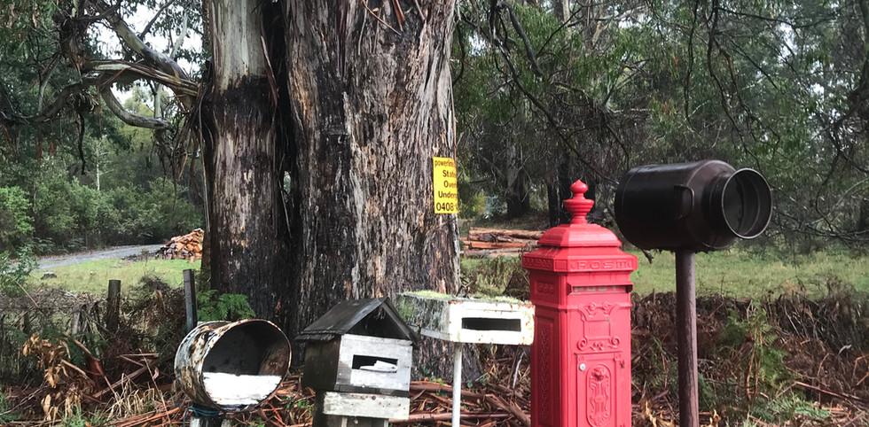 Wilmat -город оригинальных почтовых ящиков